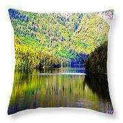Alaskan Reflection Throw Pillow
