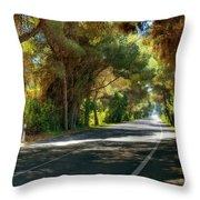 Albufera Road To El Palmar. Valencia. Spain Throw Pillow