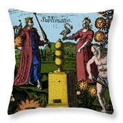 Alchemy Illustration Throw Pillow