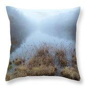 Alcotts Pond In Fog Throw Pillow