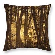 Alder Tree Marshland At Sunrise Throw Pillow