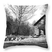 Aldergrove Farmhouse Throw Pillow
