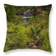 Alger Falls 1 Throw Pillow