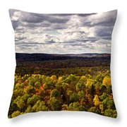 Algonquin Park Panorama Throw Pillow