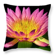 Alive With Color Throw Pillow