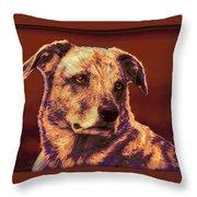 All American Mutt 2 Throw Pillow by Jane Schnetlage