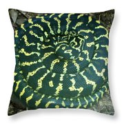 All Coiled Up Throw Pillow