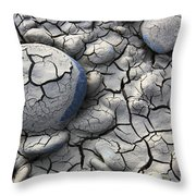 All Dried Out Throw Pillow