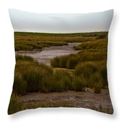 All Hallows Marshes Throw Pillow