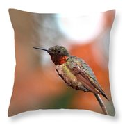 All In Red Throw Pillow