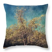 All That's Unknown Throw Pillow