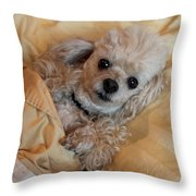All Tucked In Throw Pillow