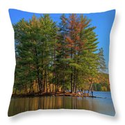 Allegheny 13723 Throw Pillow