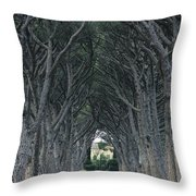 Alley . Provence Throw Pillow