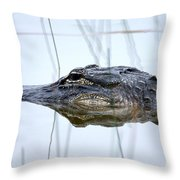 Alligator In The Everglades Throw Pillow