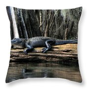 Alligator Sunning Throw Pillow
