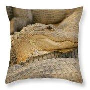 Alligators Throw Pillow