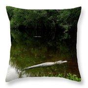 Alligators In The Evergaldes Throw Pillow