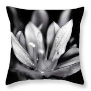 Allium Mono Throw Pillow