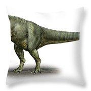 Allosaurus Fragilis, A Prehistoric Era Throw Pillow