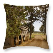 Almost A Pile Of Wood Barn Vertical Throw Pillow