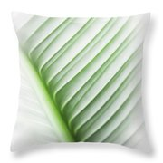 Almost Throw Pillow by Carolyn Marshall