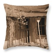 Almost Forgotten Throw Pillow