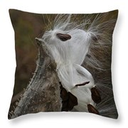 Almost Free Throw Pillow