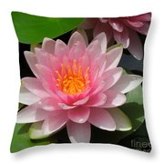 Almost Two Pink Water Lilies Throw Pillow