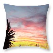 Aloe Ferox  South Africa Throw Pillow