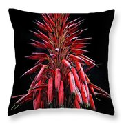 Aloe Flowers Throw Pillow
