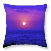 Aloha Iv Throw Pillow