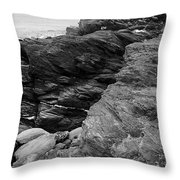 Alone Time Bw Throw Pillow