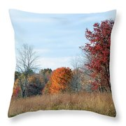 Alone With Autumn Throw Pillow