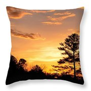 Alone With The Master Throw Pillow