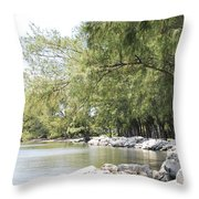 Along The Bend  Throw Pillow