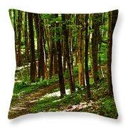 Along The Hiking Trail Throw Pillow