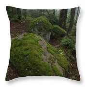 Along The Russell Pond Trail, A Young Throw Pillow