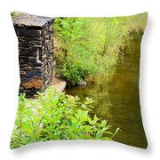 Along The Shallow Water Throw Pillow