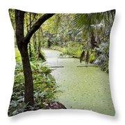Along The Stream Throw Pillow