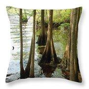 Along The Waccamaw - Cypress Swamp Throw Pillow