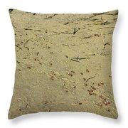 Along We Scurry  Throw Pillow