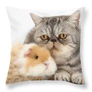 Alpaca Guinea Pig And Silver Tabby Cat Throw Pillow