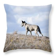Alpha Dog Throw Pillow
