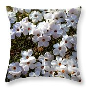 Alpine Lace Throw Pillow