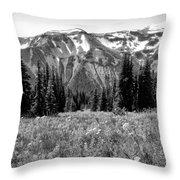 Alpine Meadow Viii At Mount Rainier Throw Pillow