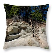 Alpine Pine Hangs On For Life Throw Pillow