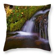 Alpine Waterfall Throw Pillow