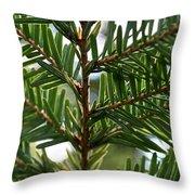 Alternate Pinnate Throw Pillow