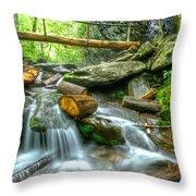 Alum Cave Bluff Trail Throw Pillow